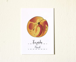 5x7-Fruits-Etsy-Peach