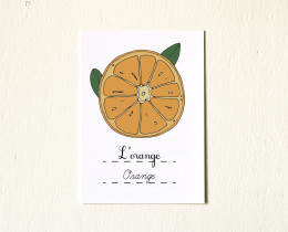 5x7-Fruits-Orange