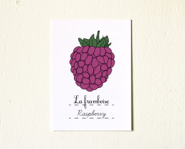 5x7-Fruits-Raspberry