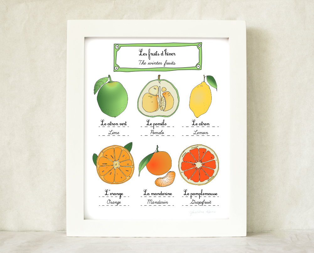 The French winter fruits art print by Géraldine Adams